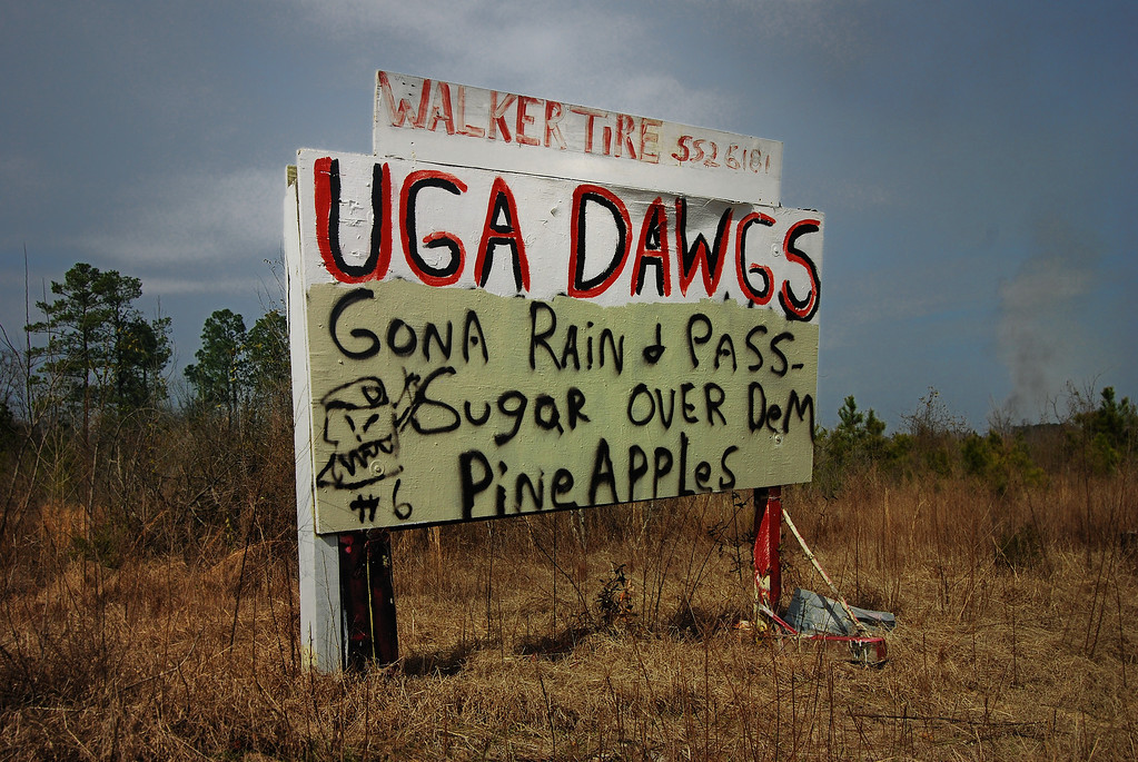 Washington County (GA) 2008