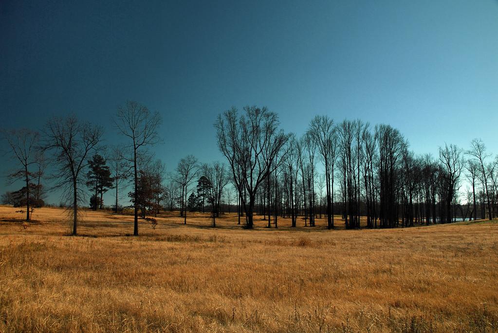 Jackson County (GA) January 2010