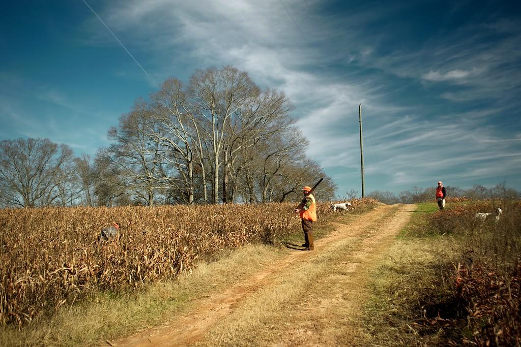 Walton County (GA) December 2014
