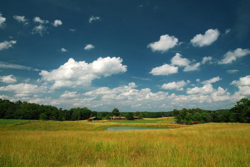 Oconee Country (GA) June 2010