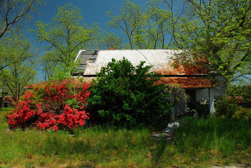 Montgomery County (GA) April 2010