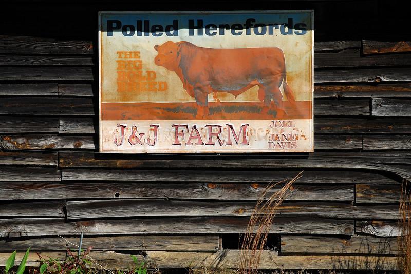 Jackson County (GA) November 2008
