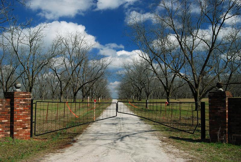 Hancock County (GA) 2008