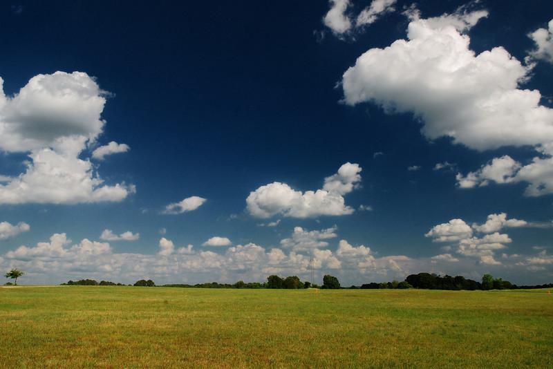 Oconee County (GA) June 2008