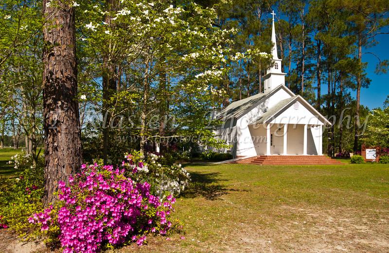 Spring blossoms and the United Methodist Church near Kirkland, Georgia, USA, America.