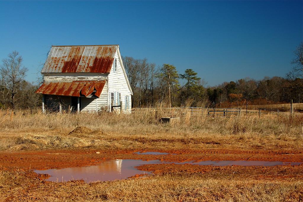 Greene County (GA) 2008