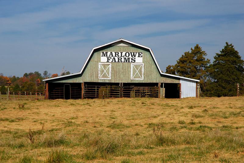 Madison County (GA) November 2008
