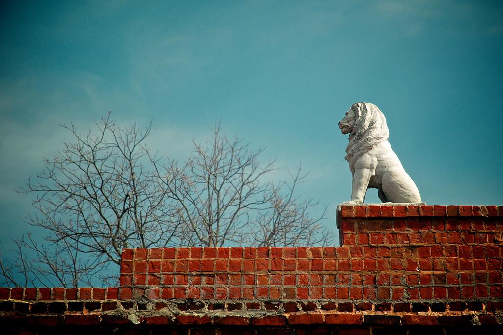 Monroe, GA (Walton County) February 2011