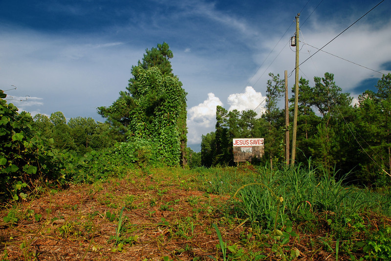 Oglethorpe County (GA) August 2009
