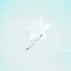 tybee island 3-7-2010 022