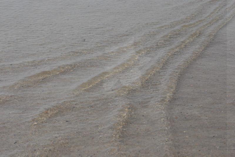 Tybee Island Fun 7-6-2009-7-7-2009 322