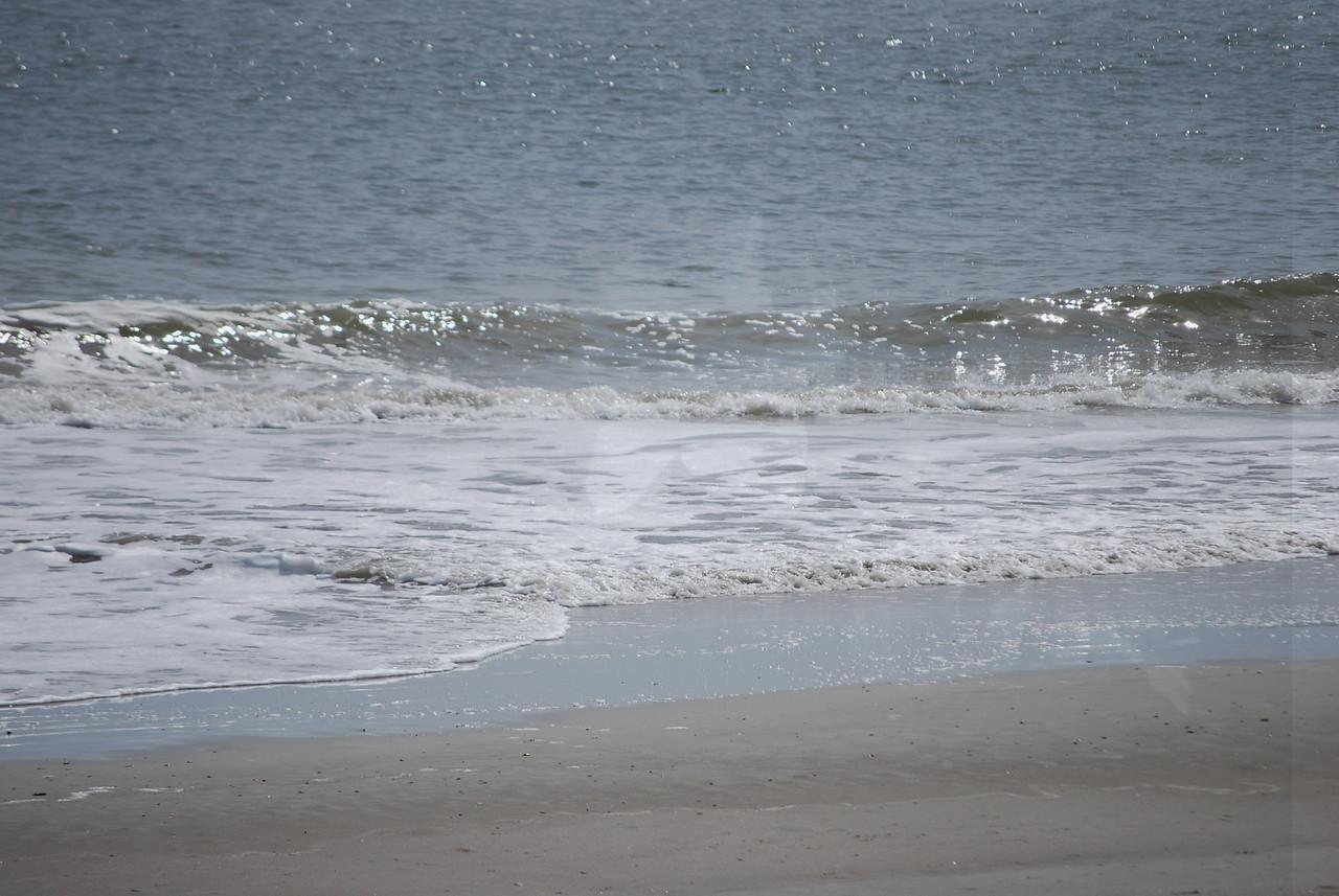 tybee island 3-7-2010 131