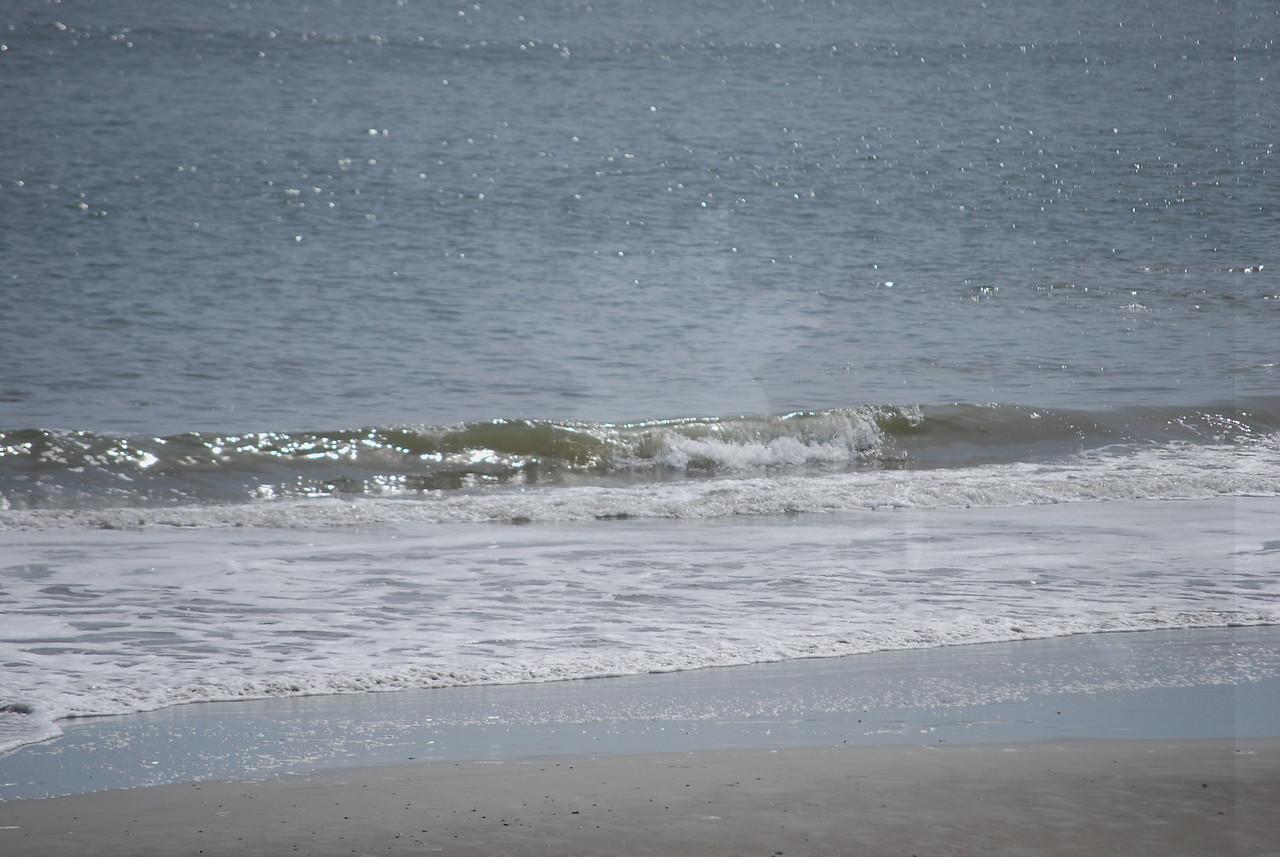 tybee island 3-7-2010 132