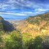 Cloudland Canyon