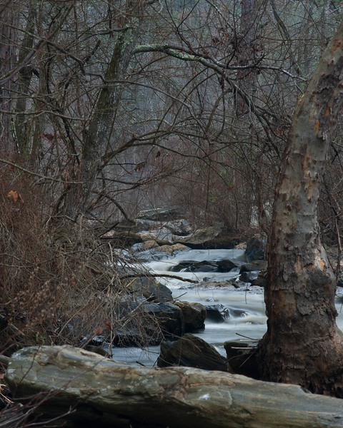 Sweetwater Creek - Perspective 2