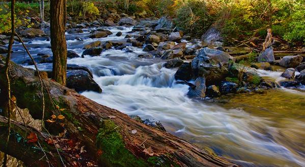 Carolina Flowing