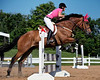 Hunter Jumper Trillium Show at Cedar Run  24