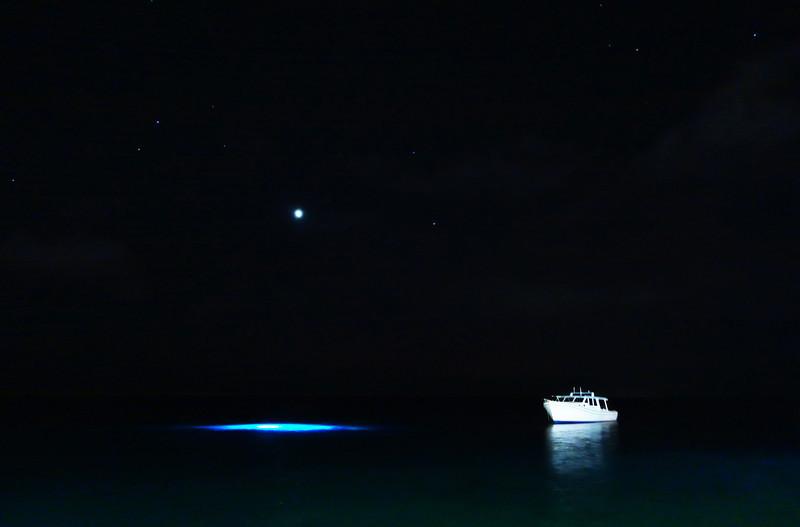 Night diving in Bonaire