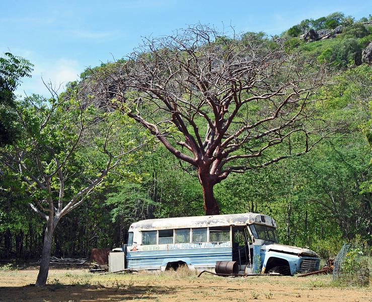 Schoolbus wreck near Rincon, in the interior of Bonaire island