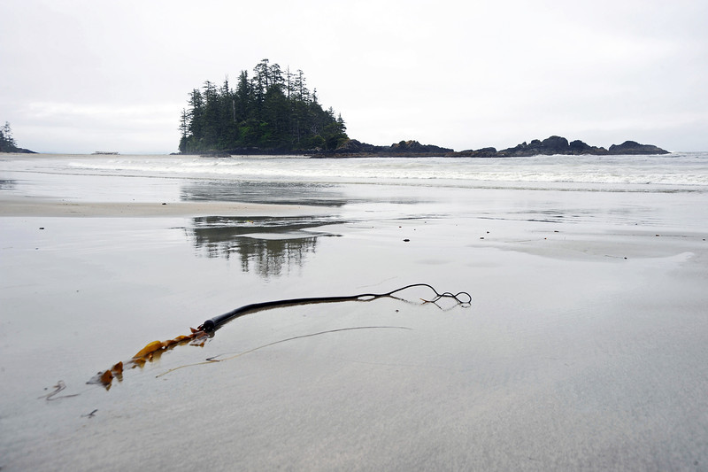 Remote tidal beach on Vancouver Island, Canada