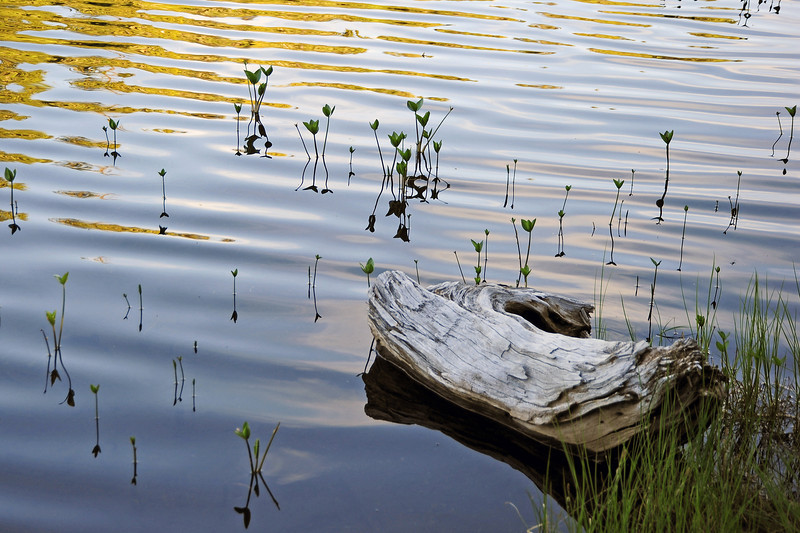 Mountain lake, western Canada