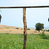 Scarecrows in Chalkidiki, Greece