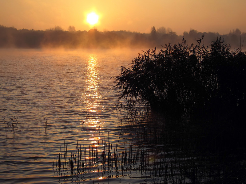 Autumn sunrise, The Netherlands