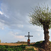 Rural cross in Limburg, The Netherlands