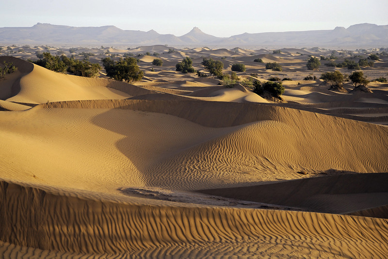 Dawn at the edge of the Sahara, southernmost Morocco