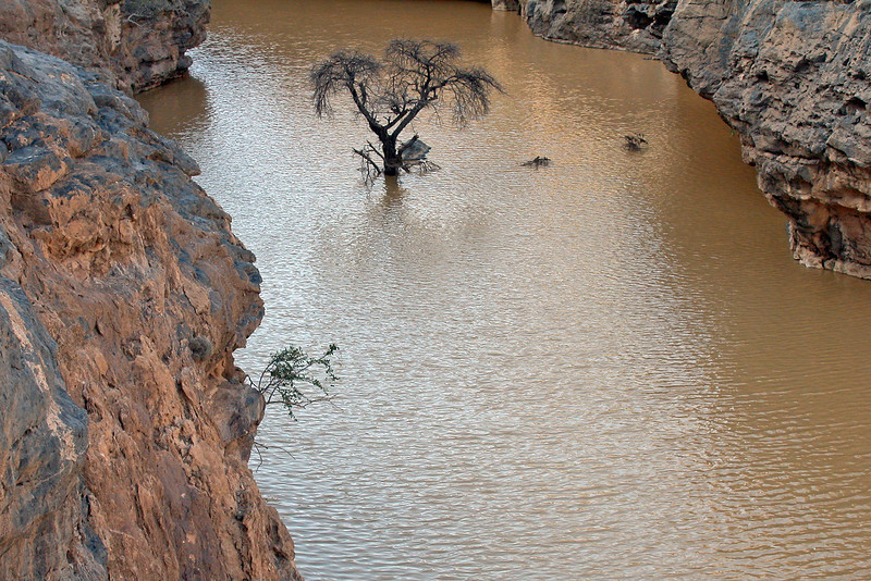 Flooded gorge in the Wadi Ghul area of the Jebel Akhdar, Oman