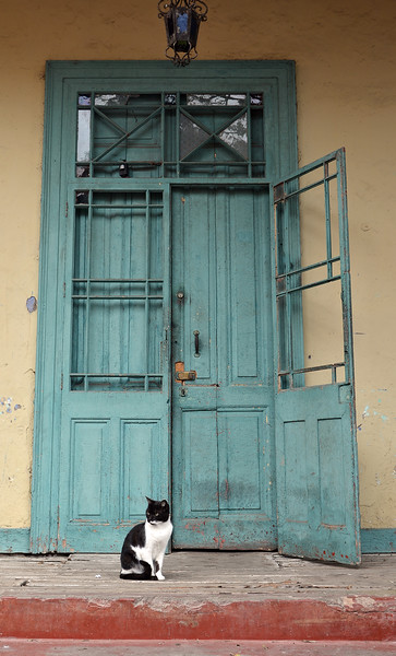 Guarding an old home in the Barranco neighborhood of Lima, Peru
