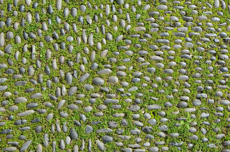 Partly overgrown pebble pavement in Madeira, Portugal