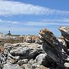 Cape Agulhas coastal cliffs and lighthouse, South  Africa