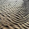 Variable wind ripple patterns on coarse sand dune near Douz, Tunisia