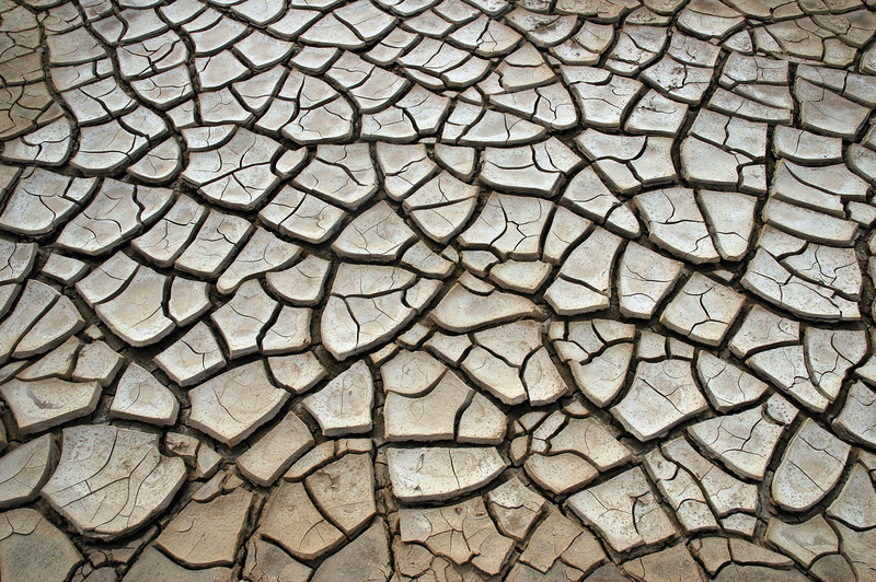 Mudcracks in dessicated wadi, Tunisia