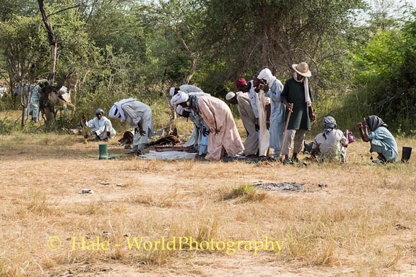 Late Afternoon Prayers on the Sahel
