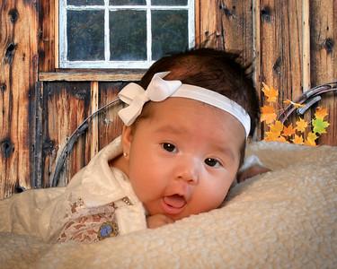 2015 BABY PHOTO