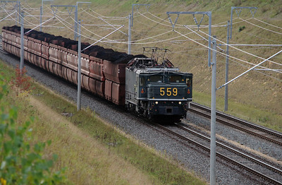 RWE, 559 at Buir on 6th October 2014 (2)