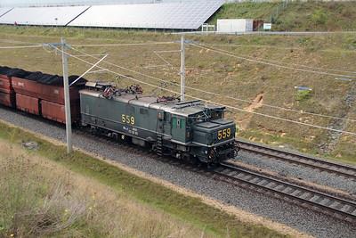 RWE, 559 at Buir on 6th October 2014 (7)