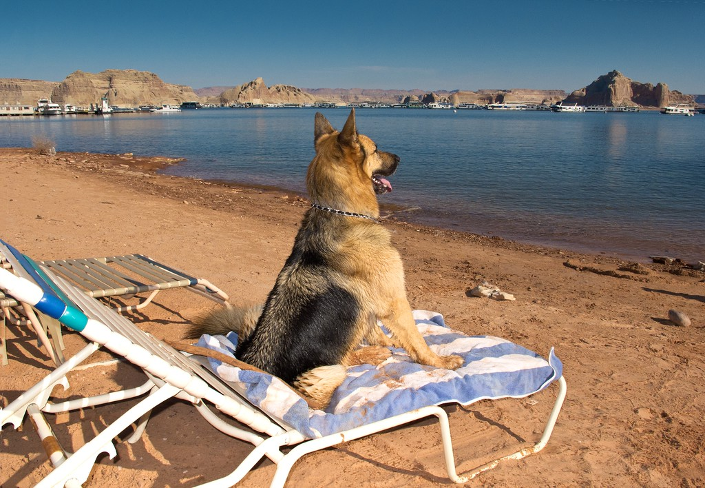 LIFEGUARD DUTY AT LAKE POWELL