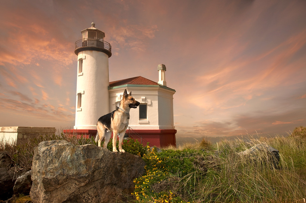 THE COQUILLE LIGHTHOUSE