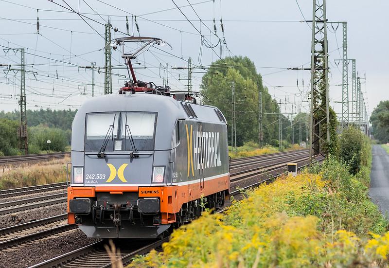 Hector 182-503 Wunstorf 13 September 2018