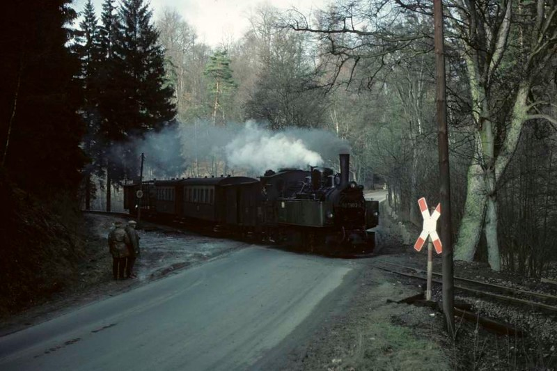 Deutsche Reichsbahn 99 5903, in the woods near Magdesprung, Sat 12 February 1977.  Photo by Les Tindall.