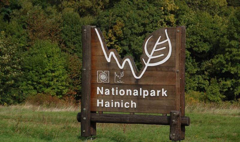 Entering Hainich National Park