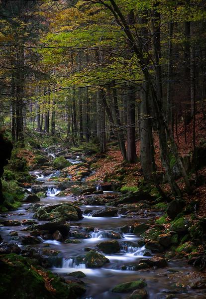 Schareben; Bayerischer Wald; Germany
