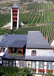 Germany, Rhine River vinyards