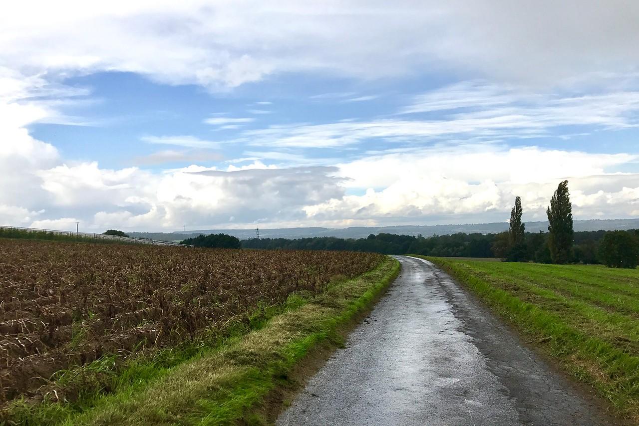 Fields near Iserlohn