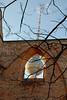Franciscan Church Ruins 05_DSC2074 (2007-04-10)