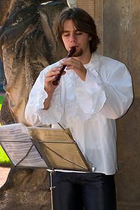 Dresden Street Musician