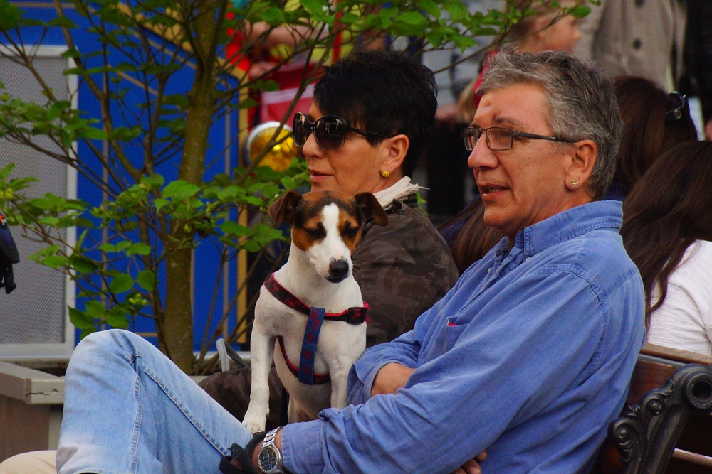 One of my favorite aspects of Europa-Park is that it is pet friendly and you'll see a lot of people with their dogs. It is truly family friendly - even for the pooch.